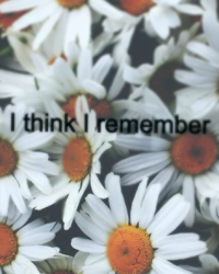 I think I remember