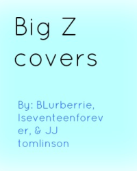 Big Z Cover Store