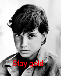 Stay gold (an outsiders fanfic)