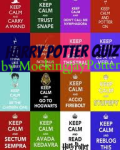 The Harry Potter Quiz Of 2014