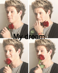my dream { Niall Horan }