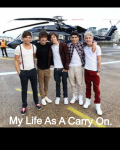 My Life As A Carry on.
