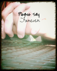 PLEASE SAY FOREVER
