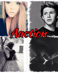 Auction ( niall horan fanfic)