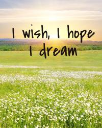 I wish, I hope, I dream
