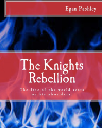 The knights rebellion