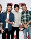 Summer Love ( a One Direction fanfiction)