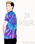 24 Hours || Niall Horan