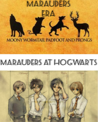 Marauders at hogwarts