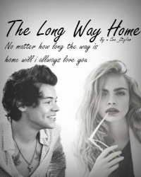 The Long Way Home - Harry Styles *pause*
