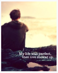 My life was perfect, then love showed up.