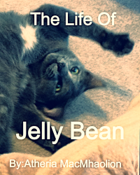 The Life Of Jelly Bean