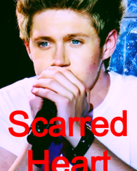 Scarred Heart (A Niall Horan Fanfiction)