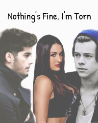 Nothing's Fine, I'm Torn
