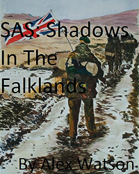 SAS: Shadows in the Falklands