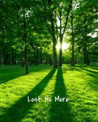Lost No More