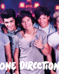 My One Direction Life
