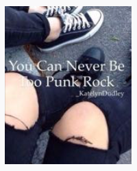 You Can Never Be Too Punk Rock