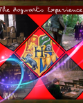 The Hogwarts Experience