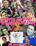 Never In Your Wildest Dreams
