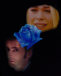 If Roses Were Blue