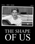 Niall Horan | The Shape Of Us