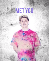 Met You (Niall Horan)
