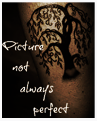 Picture Not Always Perfect