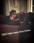 2,000 miles away from home. A Luke Hemmings fan fic.