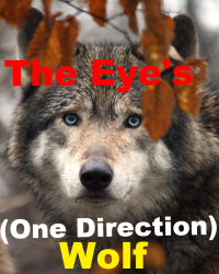 The Eye's (One Direction Wolf)