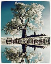 Child of Frost. (Nanowrimo novel 2014)