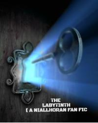 The Labyrinth ( a Niall Horan Fanfiction)