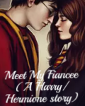 Meet My Fiancee   (A Harry/Hermione Story)