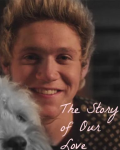 The Story of Our Love (Niall Horan)