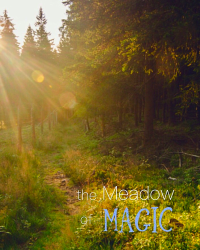 The Meadow of Magic