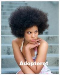Adopteret
