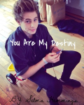 You Are My Destiny L.H.