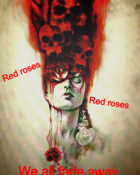 Red roses , all my petals have fallen