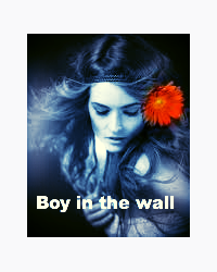 Boy in the Wall