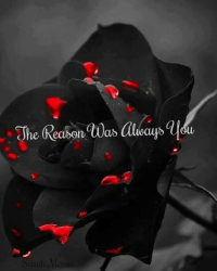 The Reason Was Always You