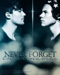 Never Forget Their Names - Larry Stylinson