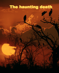 The haunting death