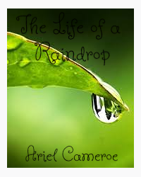 The Life of a Raindrop