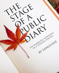 The Stage of a Public Diary
