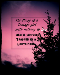 A universe contained in a labyrinth