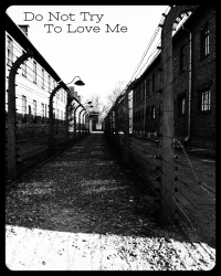 Do Not Try To Love Me  *COMPETITION ENTRY-SONG LYRICS*