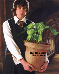 The Boy With The Plants