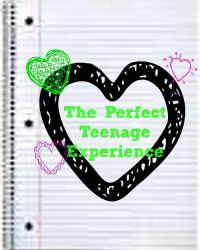 The Perfect Teenage Experience