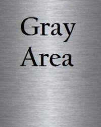 Gray Area (Sequel to White Noise)