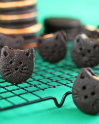 Cookies N Cream... And Kittens.